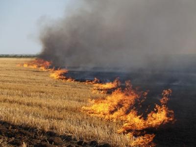 Палять траву а горять будинки: рятувальники розповіли про найбільші пожежі на Буковині