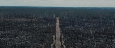 «Відчуття абсолютного апокаліпсису». Наслідки пожеж у Чорнобильській зоні зняли з дрона