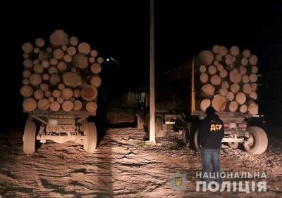 На Буковині поліція затримала дві вантажівки, які незаконно перевозили ліс