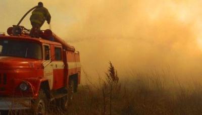 Експерт: Україні слід готуватися до масштабних лісових пожеж