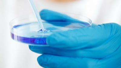 Українські ліки від коронавірусу вже тестують у Німеччині