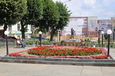 Крадуть дерева, викопують тюльпани: Чернівці потерпають  від «зелених» вандалів