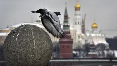 В Росії дозволили дистанційне голосування
