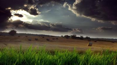 Штормове попередження: у найближчі години на Буковині очікується гроза