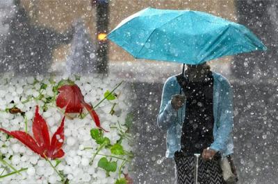 Україну заллє дощами і закидає градом: синоптик здивував прогнозом погоди на літо
