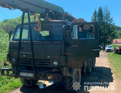 На Буковині поліція розслідує факт нелегального обігу лісодеревини