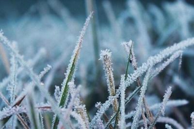 На Буковину насуваються травневі заморозки: синоптики здивували прогнозом погоди