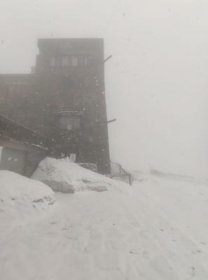 За тиждень до літа у Карпатах знову випав сніг