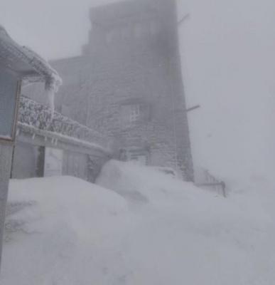 У Карпатах вирує хуртовина: засипало снігом на пів метра