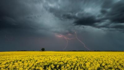 Завтра на Буковині знову прогнозують грози і сильний вітер