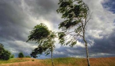 Штормове попередження: на Буковині у найближчі години очікується посилення вітру