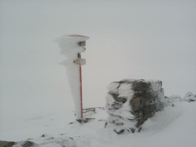 Незважаючи на початок літа у Карпатах падає сніг