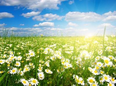 Вихідні та свята у червні: скільки будемо відпочивати