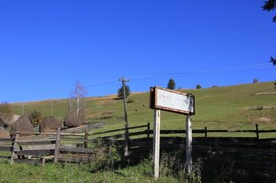 На Буковині можуть створити гірський район з центром у Вижниці