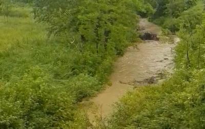 «За 20 хвилин вода піднялася на метр»: негода на Буковині не стихає