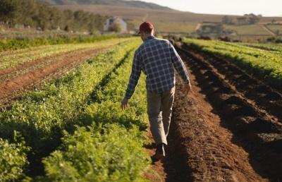 Фермери одержать пільгові умови придбання сільськогосподарської землі – ОП