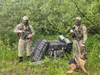 На Буковині прикордонники затримали партію контрабандних цигарок: порушники втекли