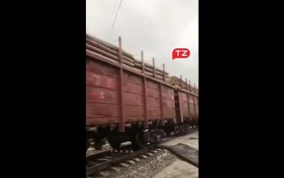 Десятки вагонів з лісом: у мережі обговорюють завантажені потяги з деревиною в Чернівецькій області