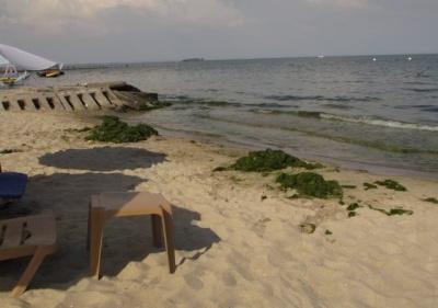 На пляжі Одеси розбився 12-річний хлопчик
