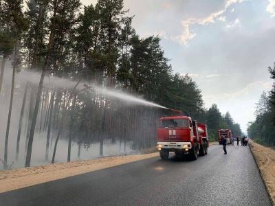 На Луганщині знову горить ліс: пожежа виникла внаслідок обстрілу