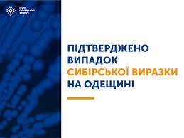 Сибірська виразка в Україні. На Одещині офіційно підтвердили випадок захворювання