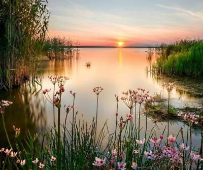 Скільки протримається тепло в Україні: синоптики дали прогноз