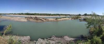 На Буковині паводок знищив лебедині ставки у Чорториї