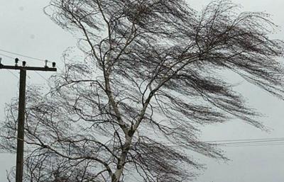 Завтра на Буковині прогнозують сильний вітер