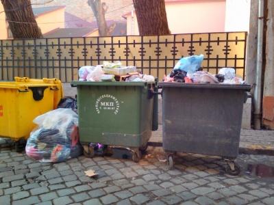 У Чернівцях контейнери для сміття будуть мити