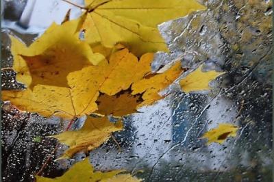 Штормове попередження: на Буковину насуваються сильні дощі