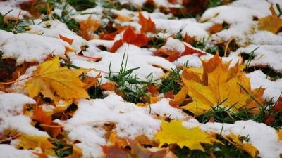 """""""Це вже будуть не заморозки, це буде мороз"""". Синоптики прогнозують значне похолодання"""