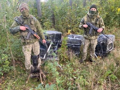Сховали під гілками: на Буковині прикордонники вилучили контрабандні цигарки на майже півмільйона гривень