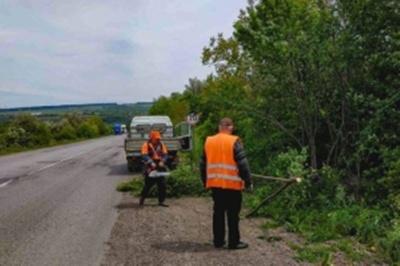 У Чернівецькій області почали прибирати узбіччя доріг від чагарників та сухих дерев