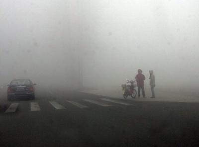 На Буковині синоптики попередили про сильний туман