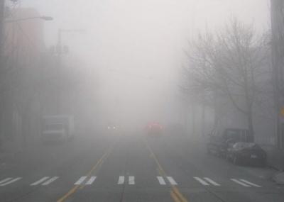 Штормове попередження: на Буковині очікується густий туман
