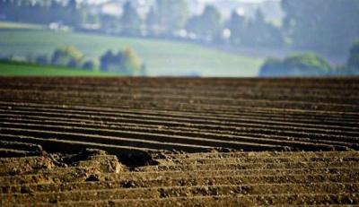 Роздали 200 гектарів за два дні. На Закарпатті розслідують «земельну аферу року»
