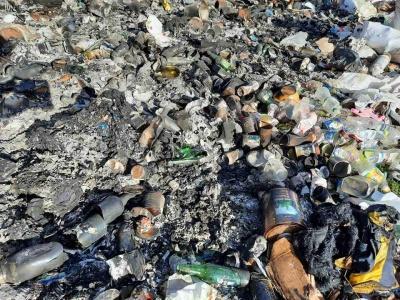 «Худоба гине від сміття»: гірські села на Буковині потерпають від масштабного звалища – фото