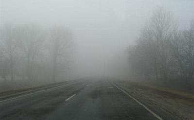 Штормове попередження: на Буковині прогнозують густий туман вночі та вранці