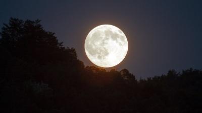 Повня 30 листопада: у чому її особливість та як вона вплине на знаки Зодіаку