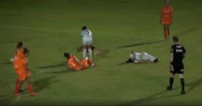 Зірвав матч і збив футболістку: грайливий собака вибіг на поле в Бразилії