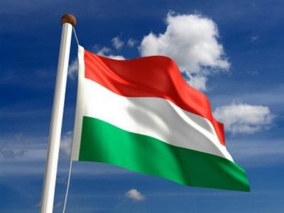 """Угорські депутати звинуватили Київ у створенні на Закарпатті """"ситуації громадянської війни"""""""