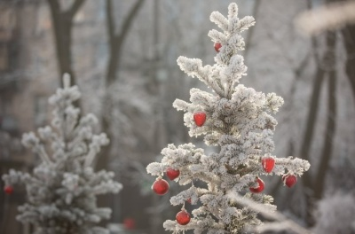 Якою буде погода в Україні на Миколая, Новий рік та Різдво: синоптики дали прогноз на зиму