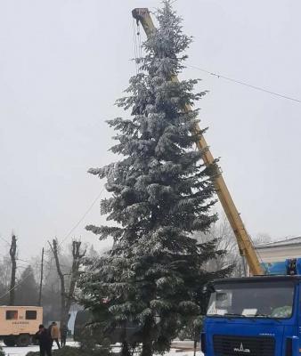 У райцентрі на Буковині вже встановлюють новорічну ялинку