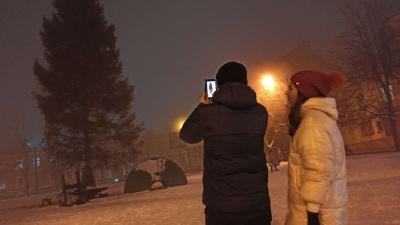 До Чернівців привезли новорічну ялинку - фото