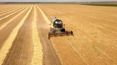 Рада знизила ставку ПДВ. Щоправда лише для деяких видів сільськогосподарської продукції