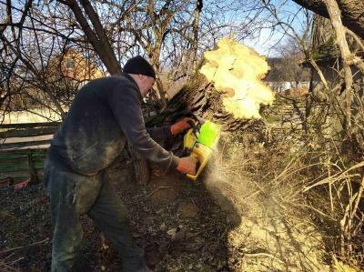 «Без дров не вижили б»: як буковинці економлять газ та світло - фото