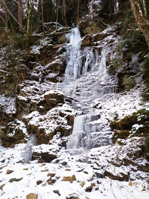 «Неймовірна краса!»: чернівчанка сфотографувала замерзлі Смугарські водоспади - фото, відео