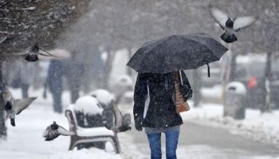 Значний сніг та хуртовини: на Західнй Україні очікується погіршення погоди
