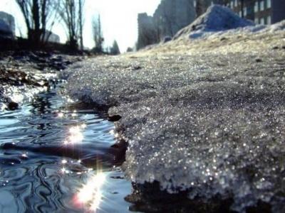 Погода на Буковині 25 січня