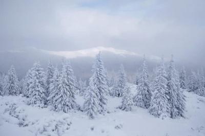 У Карпатах намело майже метр снігу